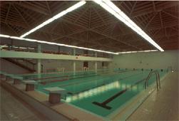 отель Olsanka в Праге, бассейн