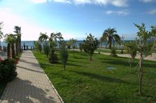 Отель Alex Beach, территория