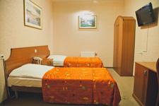Отель Викинг, двухместный номер