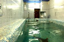 Гостиница У Максимыча, бассейн