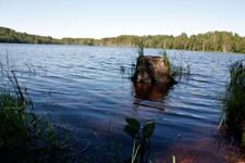 Вид на озеро Сиркоярви