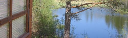 коттедж Кошкин Дом, вид на озеро