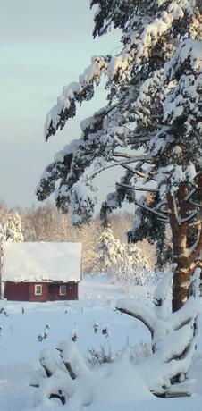 Коттедж Домик на опушке, внешний вид зимой