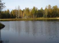 Русская дровяная баня, озеро