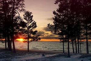 Отдых в санаториях Ленинградской области, цены на путевки