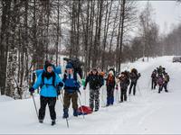 Тур на лыжах и собачьих упряжках