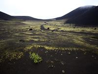 Поездка на экскурсию по вулканам
